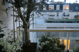 Une terrasse à Paris