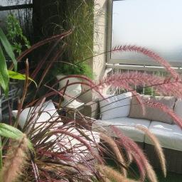 Une terrasse à Meudon